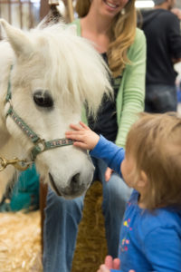 The James L. Voss Veterinary Teaching Hospital opens its doors to the public during its annual open house. April 16, 2016